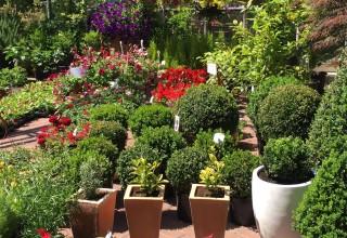 Obavijest o radu vrtnih centara, rasadnika i prodavaonica rezervnih dijelova za poljoprivrednu mehanizaciju
