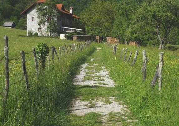 Natječaj mjera 6.4.1. Razvoj nepoljoprivrednih djelatnosti u ruralnim područjima