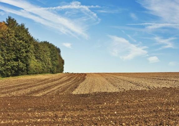"""Natječaj za tip provedbu tipa operacije 5.2.1. """"Obnova poljoprivrednog zemljišta i proizvodnog potencijala"""""""