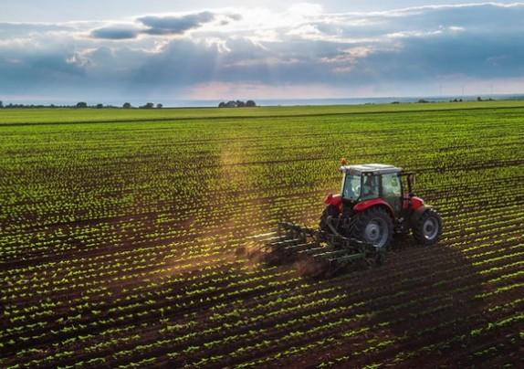 Objavljen osmi natječaj za obnovu poljoprivrednog zemljišta i proizvodnog potencijala