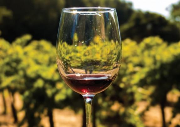 Objavljen natječaj za mjeru Informiranje u državama članicama iz Nacionalnog programa pomoći sektoru vina
