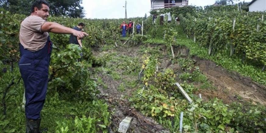 Obavijest Županijskog povjerenstva za procjenu šteta od elementarnih nepogoda poljoprivrednim proizvođačima upisanim u Upisnik