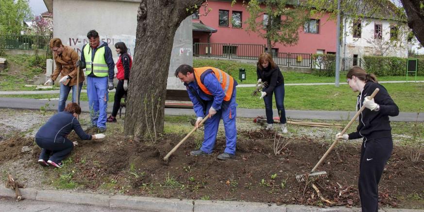 Doprinos zajednici: Nada i Ivkom u Malom parku zasadili 90 ukrasnih grmova