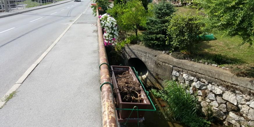Sramota: Tko je iščupao cvijeće iz žardinjera i pobacao ga u potok?
