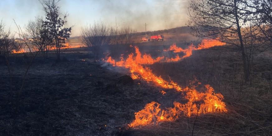 Besplatno za građane: Grad Ivanec podmiruje troškove spaljivanja zapuštenih površina