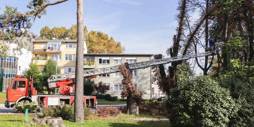 Počeli radovi na rekonstrukciji glavnog parka Ivanec vrijedni blizu 419.500 kuna