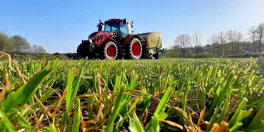 poljoprivreda_0005_a439fd20-34f2-403f-9e4d-515d91faf3e2.jpg__648x432_q85_crop_subsampling-2_upscale.jpg